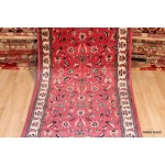 17 Foot long Pink Rose Color Red Background.