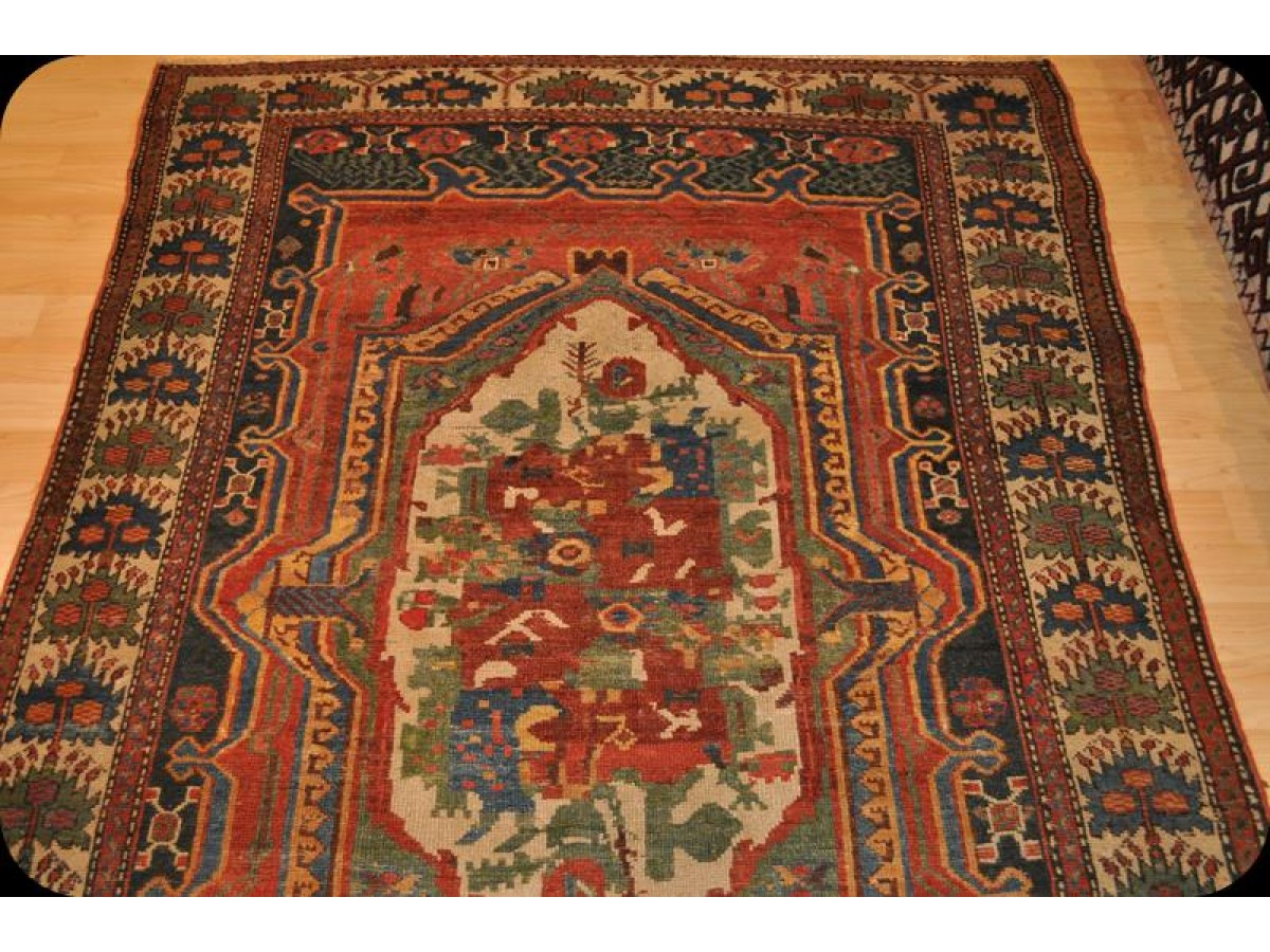 Vintage Persian Bakhtiari 5 X 7 Unique Design Late 19th