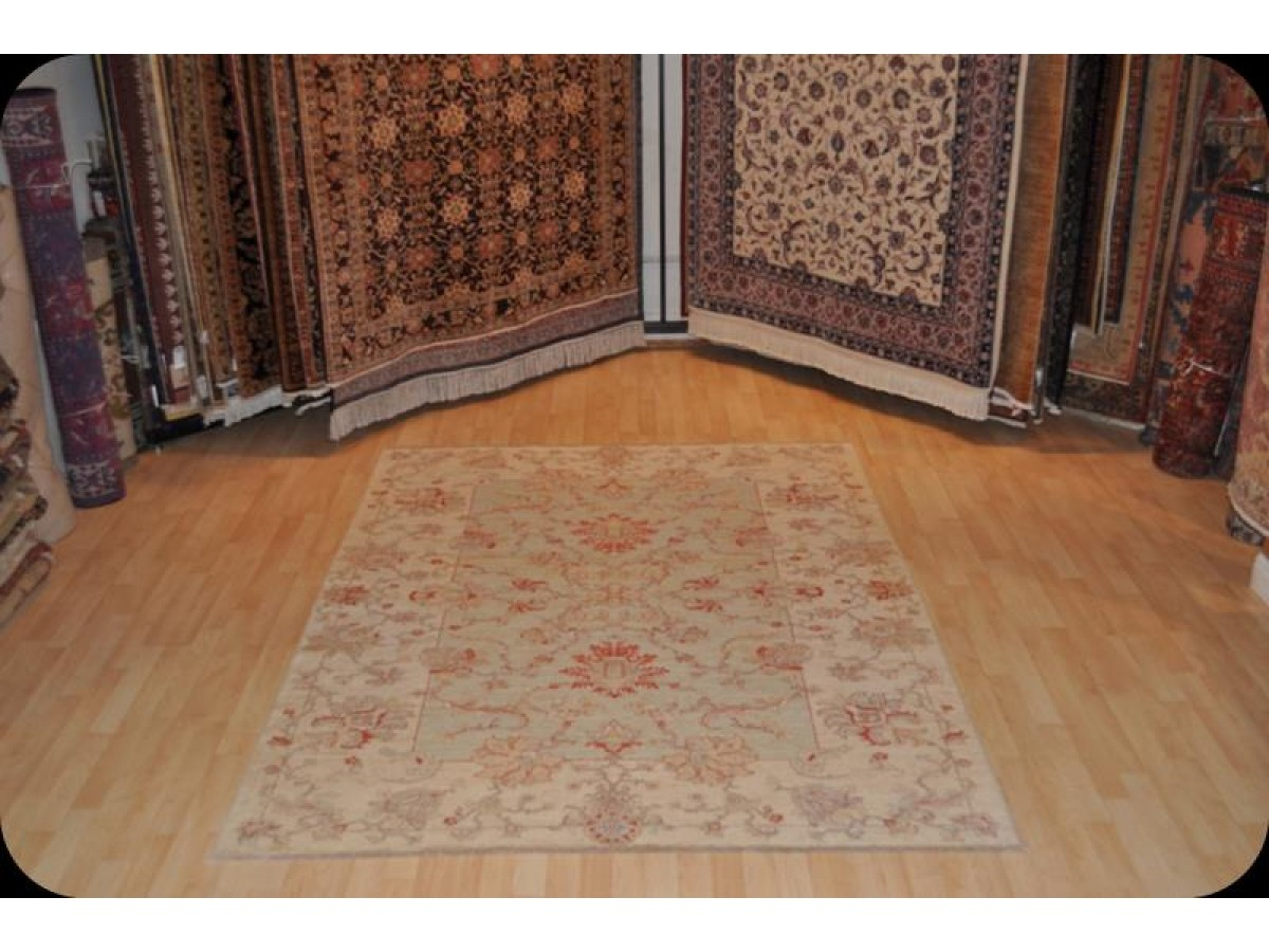 Light Muted Color Vegetable Dyed Rug Persian Design