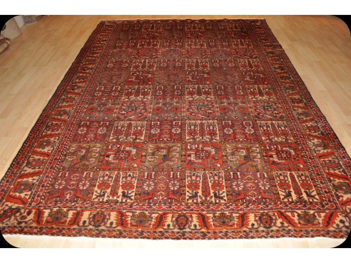 7 X 10 Handmade Authentic Persian Bakhtiari Rug Circa