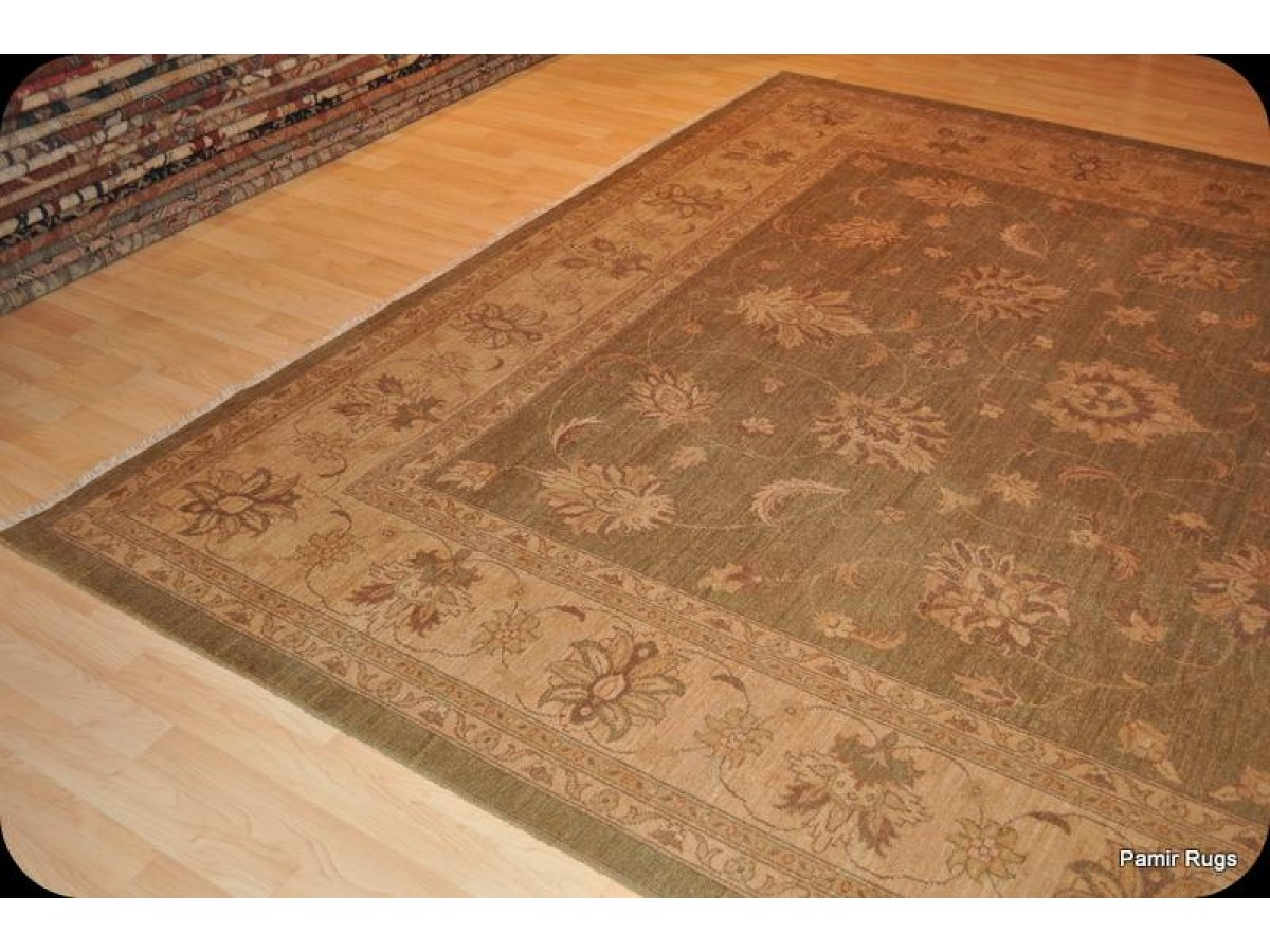 Light Color Muted Tea Green Handmade 9 X 12 Persian Vegetable Dyed Wool Area Rug